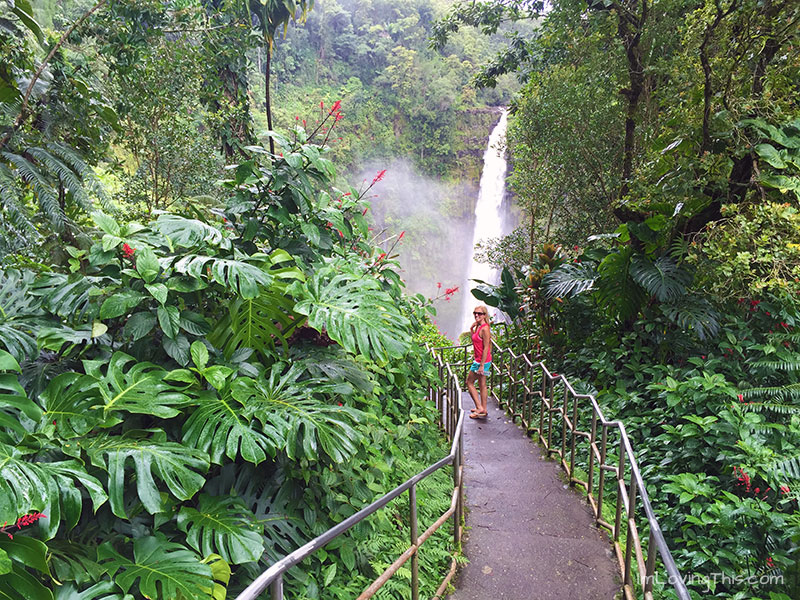 Akaka Falls State Park Hawaii The Big Island Waterfall