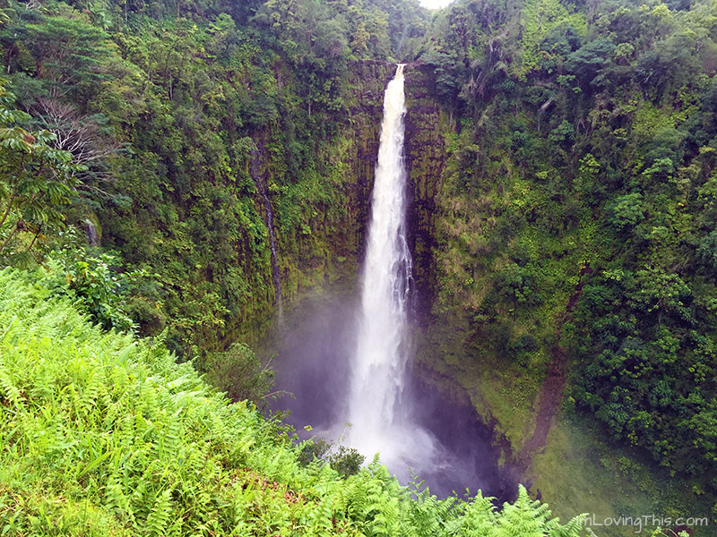 Akaka Falls Hawaii The Big Island Waterfall