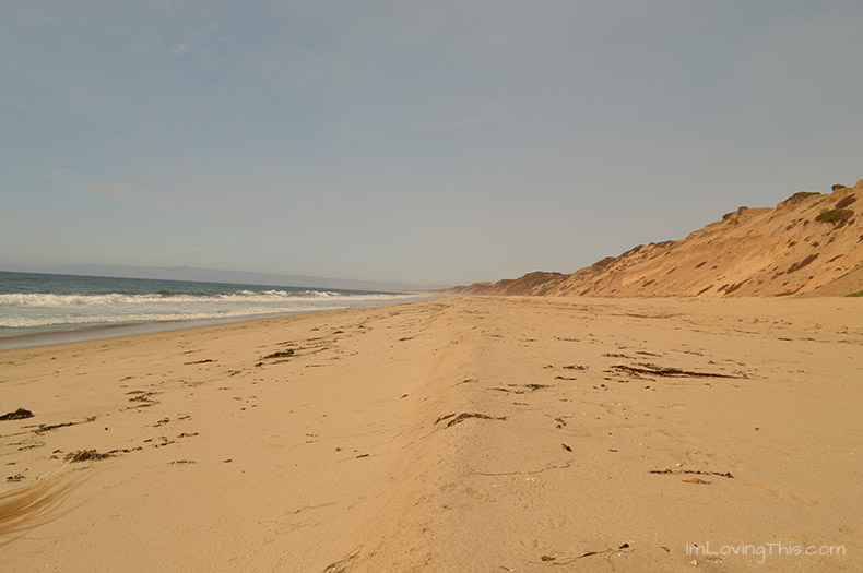 Fort Ord Sand Dunes Beach