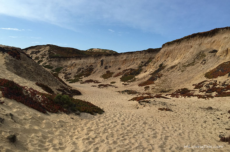 Fort Ord Sand Dunes