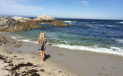 Birthday Trip to Monterey, California