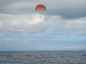 catalina island parasailing