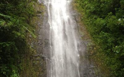 Manoa Falls, Hawaii