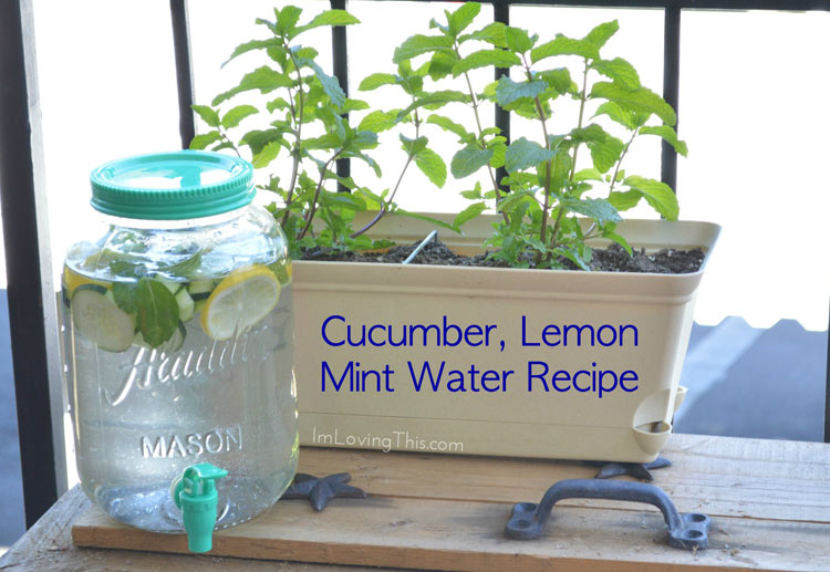 Cucumber, Lemon and Mint Water Recipe
