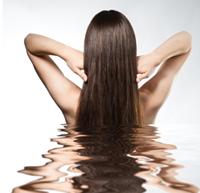 Honey, Olive Oil and Egg Hair Treatment